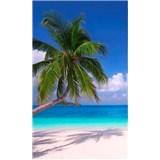 Vliesové fototapety pláž rozmer 150 cm x 250 cm