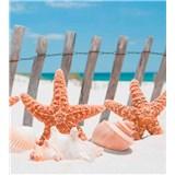 Vliesové fototapety morská hviezdica rozmer 225 cm x 250 cm