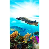 Vliesové fototapety morské ryby rozmer 150 cm x 250 cm