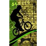 Vliesové fototapety bicycle green rozmer 150 cm x 250 cm