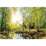 Vliesové fototapety les s potokom, rozmer 104 cm x 70,5 cm