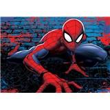 Vliesové fototapety Spider Man, rozmer 104 cm x 70,5 cm