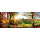 Vliesové fototapety slnko a les rozmer 250 cm x 104 cm
