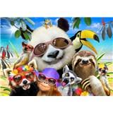Vliesové fototapety selfie veselých zvieratiek rozmer 368 cm x 254 cm