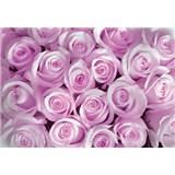 Vliesové fototapety ružové ruže, rozmer 312 x 219 cm