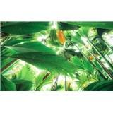Vliesové fototapety Hefele palmová strecha, rozmer 450 cm x 280 cm