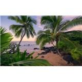 Vliesové fototapety Hefele Havajský sen, rozmer 450 cm x 280 cm