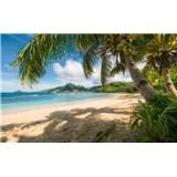 Vliesové fototapety Hefele kokosové palmy na pláží, rozmer 450 cm x 280 cm