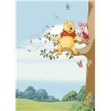 Fototapety Disney Medvedík Pú na strome rozmer 184 cm x 254 cm