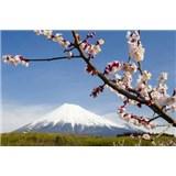 Vliesové fototapety japonská sopka s kvetmi, rozmer 312 x 219 cm
