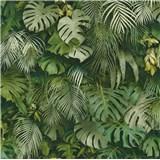 Vliesové tapety na stenu Greenery palmové listy a listy Monstera zelené