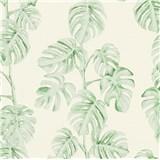 Vliesové tapety na stenu Greenery listy Monstery zelené na bielom podklade