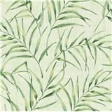 Vliesové tapety na stenu Greenery palmový list zelený na zelenom podklade