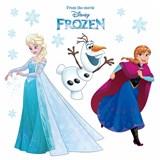 Samolepky na sklo Disney Frozen snehové vločky rozmer 31 cm x 31 cm