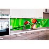 Samolepiace tapety za kuchynskú linku lienka rozmer 260 cm x 60 cm