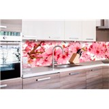Samolepiace tapety za kuchynskú linku jabloňové kvety rozmer 260 cm x 60 cm