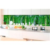 Samolepiace tapety za kuchynskú linku brezový les rozmer 350 cm x 60 cm