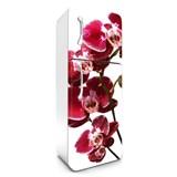 Samolepiace tapety na chladničku orchidea rozmer 180 cm x 65 cm