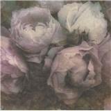 Vliesové tapety IMPOL New Wall kvety veľké bielo-fialové