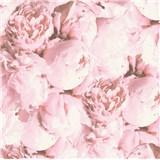Vliesové tapety IMPOL New Studio pivonky svetlo ružové