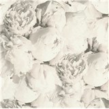 Vliesové tapety IMPOL New Studio pivonky sivo-biele