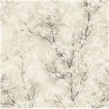 Vliesové tapety IMPOL New Wall florálny vzor krémový