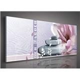 Obraz na plátne Zen gargen 145 x 45 cm