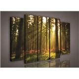 Obraz na plátne les s východom slnka 150 x 100 cm