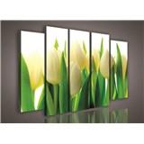 Obraz na plátne tulipány 150 x 100 cm