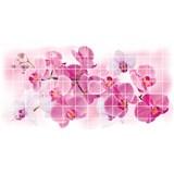 Obkladové 3D PVC panely rozmer 955 x 480 mm, hrúbka 0,2 mm, kvety orchidey