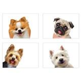 Samolepky na stenu selfie psíky rozmer 45 x 65 cm