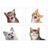 Samolepky na stenu selfie mačky rozmer 45 x 65 cm