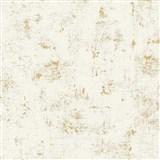 Vliesové tapety na stenu Trendwall omietkovina zlato-biela