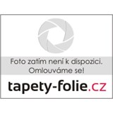 Obrusy návin 20 m x 140 cm listy hnedé