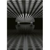 Fototapety 3D guľa strieborná rozmer 184 x 254 cm