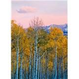 Fototapety brezy a hory rozmer 184 x 254 cm