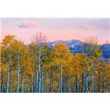 Fototapety brezy a hory rozmer 368 x 254 cm