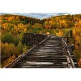 Fototapety most v lese rozmer 368 x 254 cm