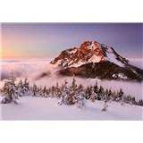 Vliesové fototapety zasnežený horský vrchol rozmer 368 x 254 cm