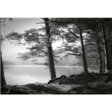 Fototapety lesní jazero rozmer 368 x 254 cm