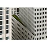 Vliesové fototapety architektúra biele výškové budovy rozmer 368 x 254 cm