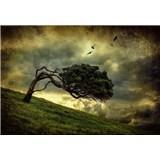 Fototapety desivý strom rozmer 368 x 254 cm