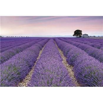 Vliesové fototapety Provence, rozmer 368 x 248 cm