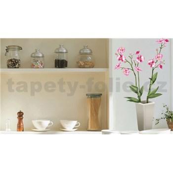 Samolepky na stenu orchidea