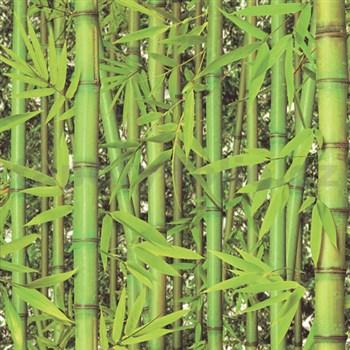Vinylové tapety na stenu Replik bambus zelený