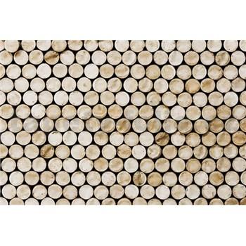 Luxusné vliesové fototapety drevo rozmer 400 cm x 270 cm