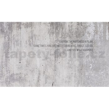 Luxusné vliesové fototapety beton 450 x 270cm