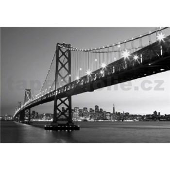 Fototapety San Francisco Skyline, rozmer 366 x 254 cm - POSLEDNÉ KUSY