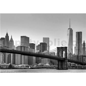 Fototapety New York, rozmer 366 x 254 cm