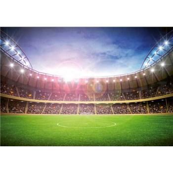Fototapety štadión, rozmer 366 x 254 cm